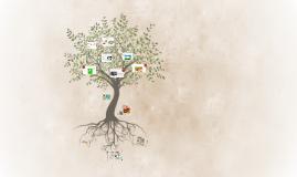 Genetically Modified Organisms (GMO's) :