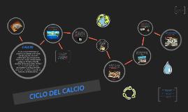 CICLO DEL CALCIO