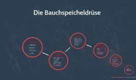 Copy of Die Bauchspeicheldrüse