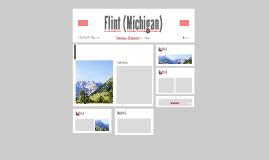 Flint (Michigan)