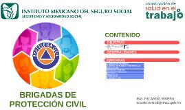 Copy of Copy of Brigadas Protección Civil