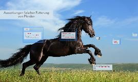 Auswirkungen falscher Fütterung von Pferden