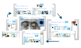 Biologie: Het oog