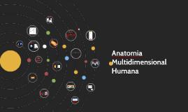 Copy of Anatomia Multidimensional Humana