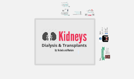 Kidneys - Dialysis & Transplants