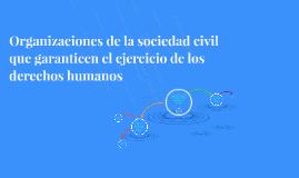 Organizaciones de la sociedad civil que garanticen eljercici