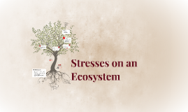 Copy of Stresses on an Ecosystem
