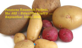 Copy of Potatoes Research Project: