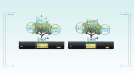 WLRC Trees of Government 2013