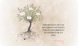 Copy of IMPORTANCIA DE LOS RECURSOS NATURALES PARA EL DESARROLLO ECO