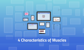 4 Characteristics of Muscles