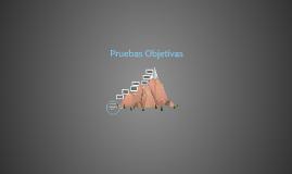Pruebas Objetivas 2