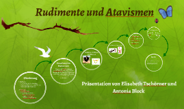 Rudimente und Atavismen