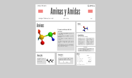 Copy of Aminas y Amidas