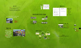 Factores de Riesgo Biológicos en las Áreas Verdes de la Universidad Ricardo Palma