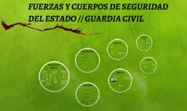 FUERZAS Y CUERPOS DE SEGURIDAD DEL ESTADO // GUARDIA CIVIL