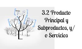 Producto principal y subproductos y/o servicio.