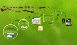 Hidrosogamoso