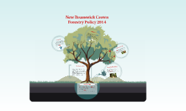 New Brunswick Crown Forestry Policy 2014