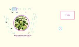 Copy of Hongos parásitos de plantas