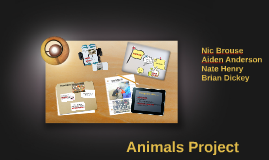animals project