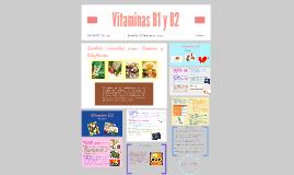 Vitaminas B1 y B2
