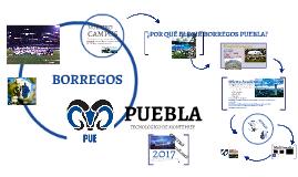 Borregos Puebla Reclutamiento