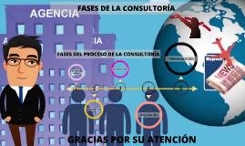 FASES DE LA CONSULTORIA