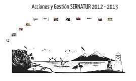 Acciones y Gestion SNT 2012 -2013