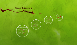 Food Chains- 2016- General