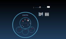 OATP transporters