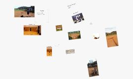 My Softball Camp