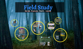 Field Study- Biology