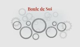 Boule de Sui