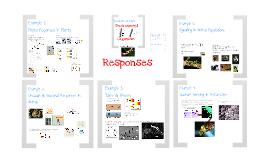 Physiology K:  Responses