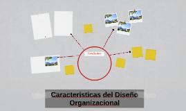 Caracteristicas del Diseño Organizacional