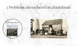 3 Problems slaves faced on plantations