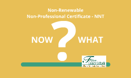 Non-Renewable Non-Professional
