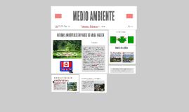 MEDIDAS AMBIENTALES EN PAISES DE HABLA INGLESA