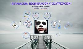 Reparación e Histocicatrización