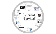 POM: Blizzard Survival