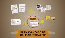 """PLAN AVANZADO DE CALIDAD """"TAMALES"""""""
