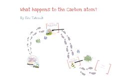 02.06 Intro To Photosynthesis