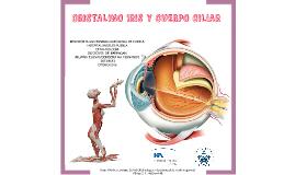 Copy of CRISTALINO, IRIS Y CUERPO CILIAR