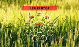U.S.A. By katie.b