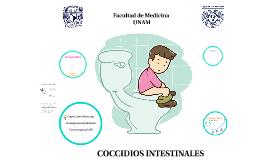 Coccidias intestinales