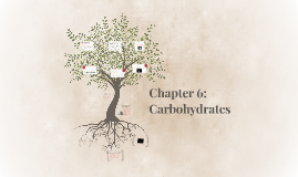 Chapter 6: Carbohydrates