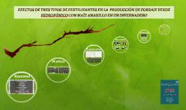 EFECTOS DE TRES TIPOS DE FERTILIZANTES EN LA  PRODUCCIÓN DE