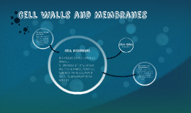Cell Walls and Membranes