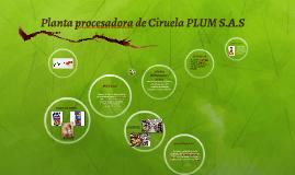 Planta procesadora de Ciruela PLUM S.A.A